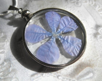 Periwinkle Plumbago Blossom Pressed Flower Looking Glass Pendant-Symbolizes Spiritual Desires-Gifts Under 30-Nature's Wearable Art