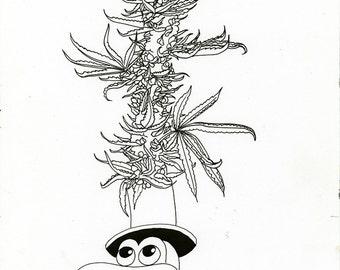 Botanical Collaboration - Matt Furie and Aiyana Udesen - Original Drawing