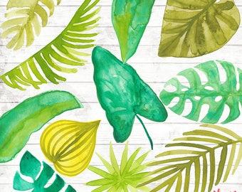 Tropical Leaves Clipart Clip Art Commercial Use - Vector Graphic - Botanical Digital Clip Art - Digital Image - leaf print Download - ACGA06