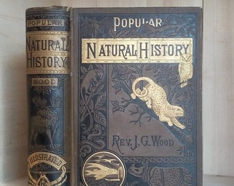 Antique Book Popular Natural History by Reverend Wood 1885 Decorative Victorian Binding Illustrated Wild Animals Illustrated Vintage Books