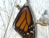 Monarch Pendant. Real Butterfly Jewelry. Butterfly Pendant. Resin Butterfly Pendant.