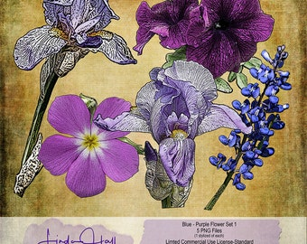 Blue and Purple Flowers Set 1 (Extracted)