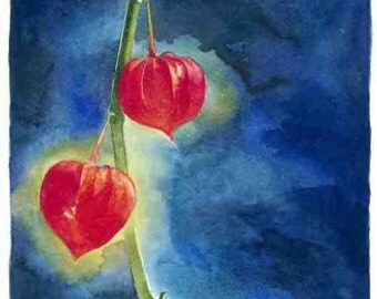 Long Chinese Lanterns, Watercolour Giclée print