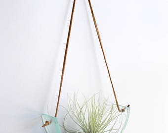 Clear glass airplant swing with leather cord for hanging - plant wall hanging