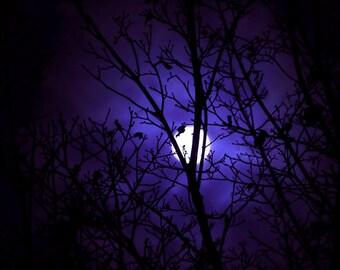 Purple Moon Print, Dreamy Moon Print, Purple Fantasy Art, Moon Photo, Full Moon Picture, Surreal Moon, Purple Full Moon, Moon Photography