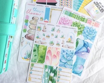 Succulent Stickers Set, Bible Stickers, Planner Stickers