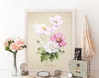 Botanical Print, Japanese Anemones Print, Flower Print, Anemones Botanical Print, Anemones Print, Decorative Botanical Reproduction FL079