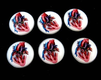"6 Anatomical Heart Sewing Buttons.  Human Heart Handmade Buttons.  3/4"" or 20 mm"
