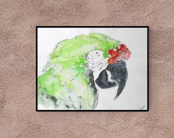 Pet Portrait: Macaw - original art - watercolor - pet lover gift - pet memorial - custom bird portrait - pet painting - personalized pet