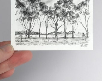 Original ACEO, charcoal drawing, gum tree sketch, Australian landscape artwork, black white, miniature art, artists trading card