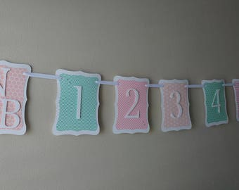 Vintage Newborn through 12 Months Photo Banner in Pink, Light Coral, and Minty Aqua