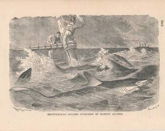 1887 Shark Attack Antique Print