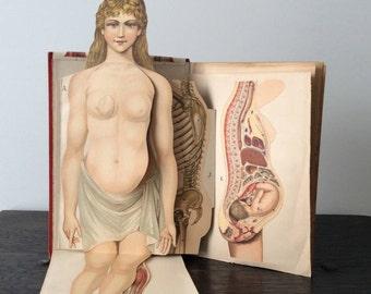 Antique German Medical Book / Quack  Medicine / Oddity / Biltz Anatomy / Das Neue Natur / Art Nouveau / Weird