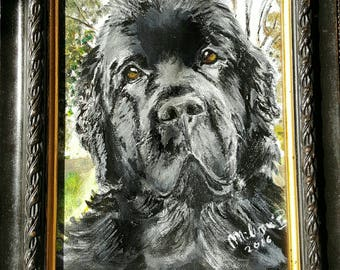 Ritratto personalizzato su ordinazione ESEMPIO - Custom order for pet portrait