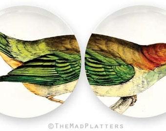 Tanager Bird plate