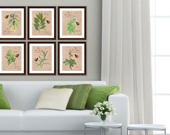 Herb Garden - Art Prints - 6 Print Set - 8x10 prints - Vintage Style Herbs and Butterflies - French Country - Cottage Style