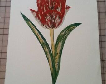 Tulip print