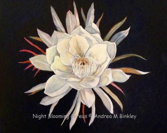Night blooming Cereus Original Oil Painting on Canvas 20 x 20 inches