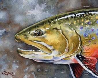Brook Trout Art Print - Watercolor Painting - Fly Fishing Art - Signed by Artist DJ Rogers - Wall Decor