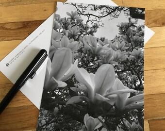 Card - Tulip tree