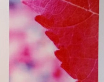 Red leaf card 5x7