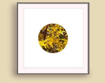 Best design homes, Spring blossom print, Spring blossom art, Gold flower pictures, Girl wall decor idea, Nature art poster