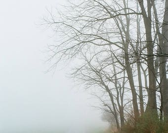 Landscape Photograph - Fine Art Print, Fog Landscape, Film Photography, Wall Art, 8x8, 12x12,