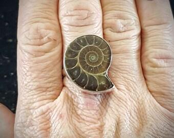 Ammonite Ring - Size 8.25