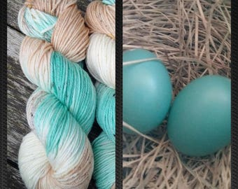 For Shanta  Worsted Superwash Merino , Hand Dyed Yarn 200 yd
