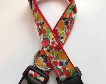 Fruit Dog Collar adjustable dog collar multicolored dog collar bright colors pet collar boy or girl dog collar dog accessories dog collar