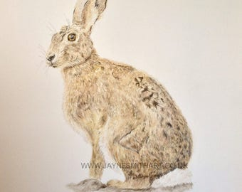 """Original Hare Painting - """"At First Glance"""" - Wildlife Art"""