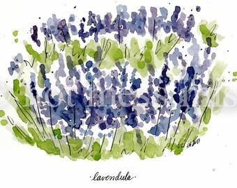 PRINTABLE Lavender Lavendula Watercolor Ink Art Digital Download
