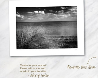 Giger Key Grass, Florida. Signed 12x18 Black & White Fine Art Photo Matted to 18x24