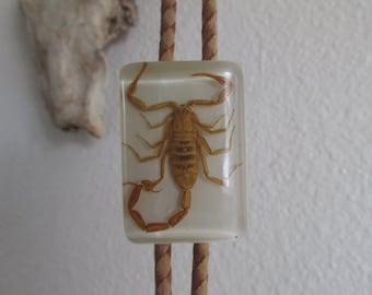 vintage scorpion bolo tie- Western wear rockabilly dangerous cowboy
