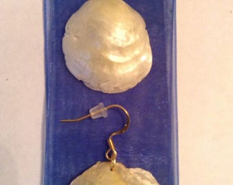 Seashell earrings 7