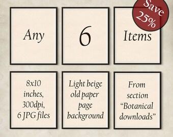 Set of 6 prints, Set of 6 wall art, Set of botanical prints, Custom set, Print set, Antique botanical print set, Printable set, 8x10 prints