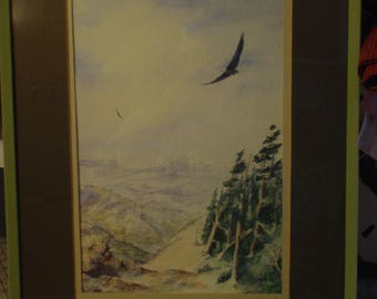 Watercolor by D. E. Anderson of Eagle Soaring