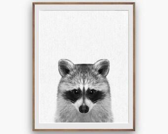 Raccoon Print, Raccoon Nursery Art Decor, kids Wall Art Decor, peekaboo print, Digital Download, Large Printable Poster, Forest Animals