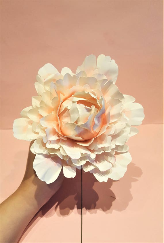 printable rose peony templates tutorial paper flower