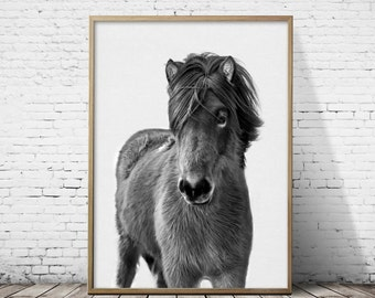 Nursery decor, Cute baby horse, Art print, Home decor, Printable horse art, Horse art, Wall art, Nursery art,