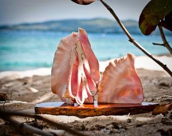 Sailboat: Conch Shell on Mahogany Sculpture