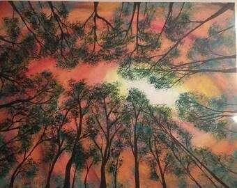 Forrest Daydream