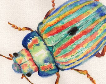 Colourful Beetle, Watercolour Painting, Original Artwork