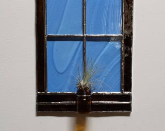 Air Plant in a Stained Glass Window