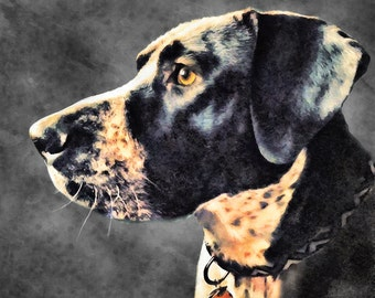 Custom Pet Portrait, Digital PET PAINTING from your photo, Free Shipping!