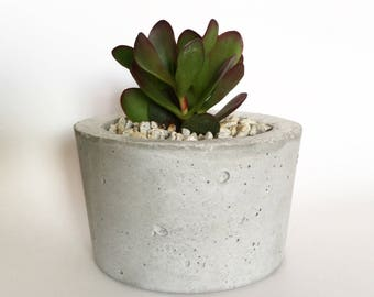 Barrel Concrete Planter
