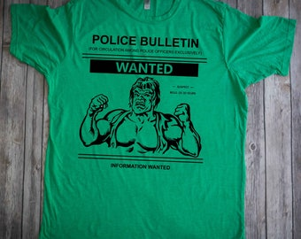 Green Incredible Hulk shirt / Hulk Tv Show 70's /  Bill Bixby Lou Ferrigno t-shirt
