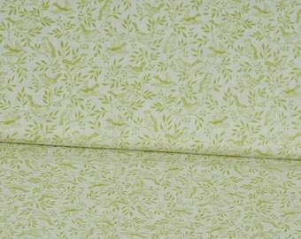 Cotton heartwood Songbird white/green