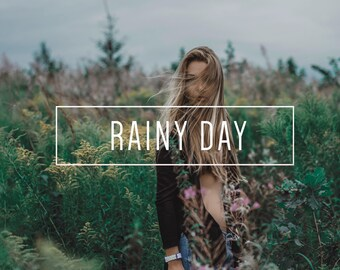 Rainy Day Indie Muse Collection 3 Presets  4 Tool Presets 9 LR Brushes Lightroom Presets for Professional Results by LouMarksPhoto