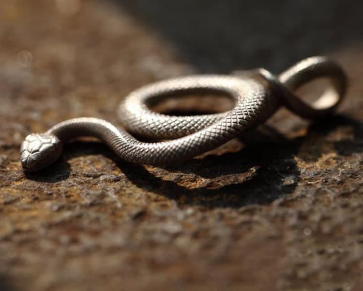 Silver snake pendant serpent pendant silver snake jewelry silver snake pendant serpent pendant silver snake jewelry unisex pendant viper necklace charm silver snake charm reptile pendant mozeypictures Image collections